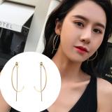 S925银针欧美夸张2019新款网红气质耳钉秋冬季耳环